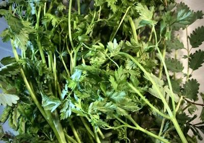 Kräuter für grüne Soße
