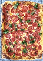 Tomaten-Tarte fertig gebacken - köstlich!